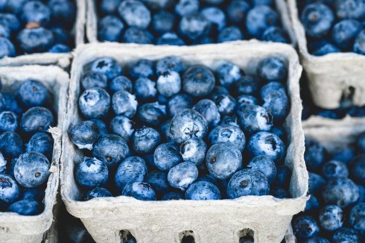 20+ Food BlogIdeas